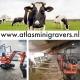 Atlas Minigraver koeien ligboxen